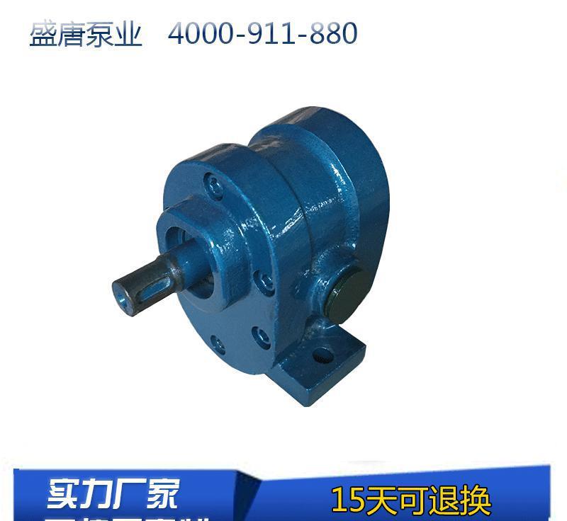 2cy型渣油齿轮油泵发货迅速 可根据客户技术参数定做