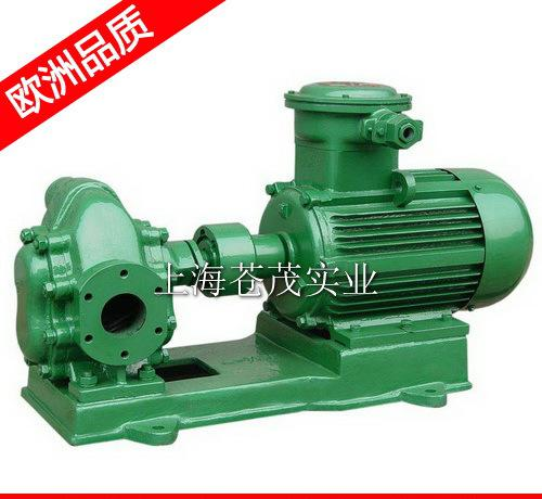 供应不锈钢导热油泵 不锈钢电动抽油泵 2CY-12/1.3-2 零售