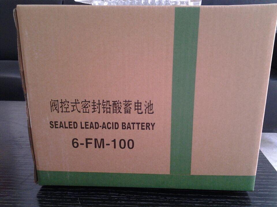 直销消防应急电源柜EPSUPS蓄电池100AH 电源机芯线路板充电机