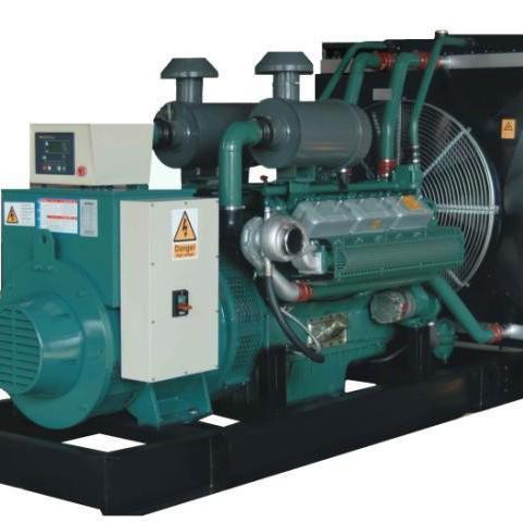 河南雷鸣河南发电机 无锡动力柴油发电组 雷鸣发电 发电机组