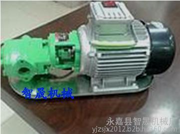 手提式WCB齿轮油泵安全阀 抽油泵 机油泵
